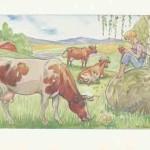 Lill-Pelle och kossorna Maj Lindman Citron Gränna